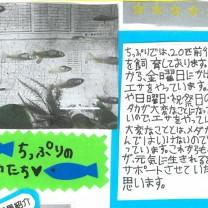 ちっぷり新聞20131016_03